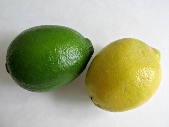 Lemon-Lime Bars