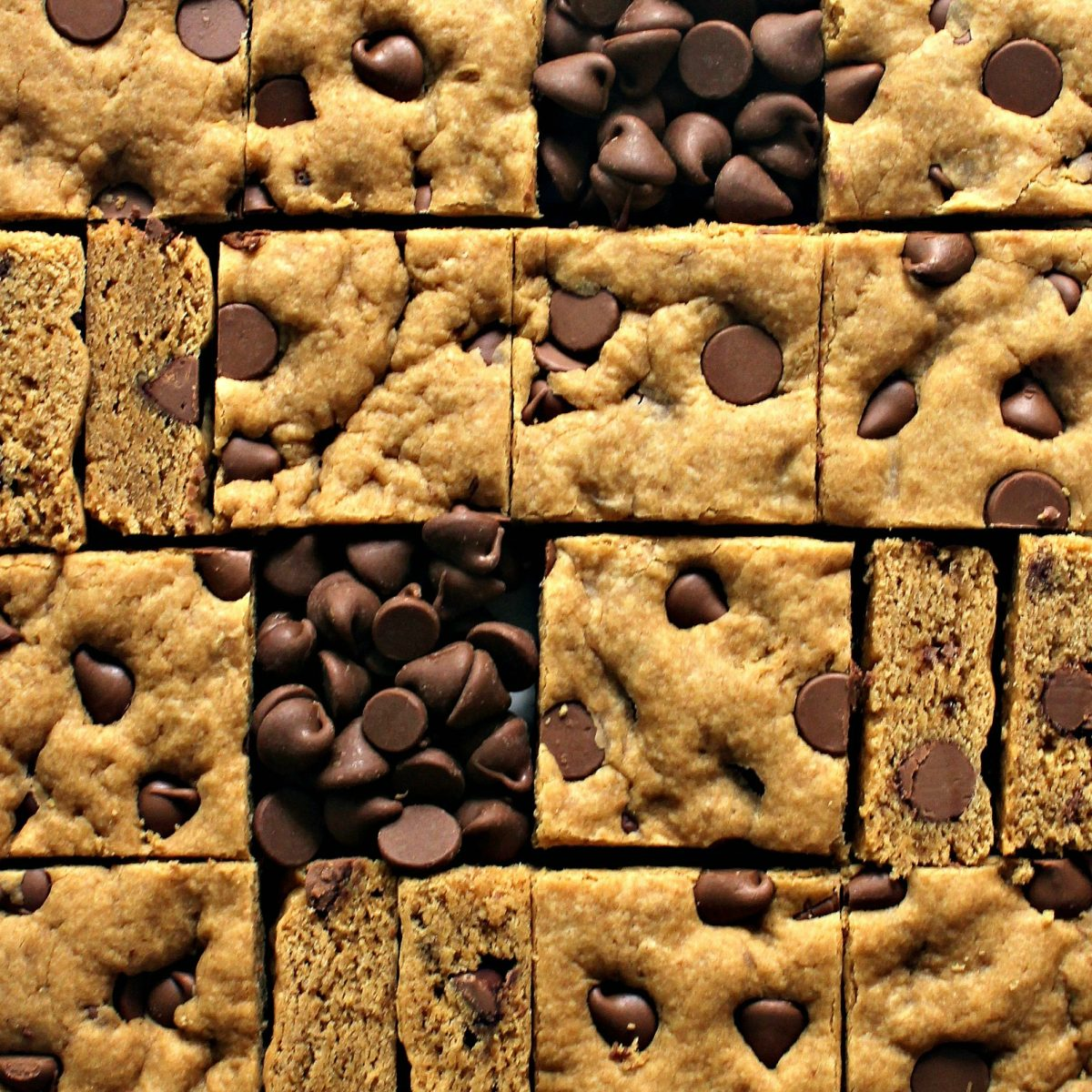 Peanut butter cookie bars cut in squares.