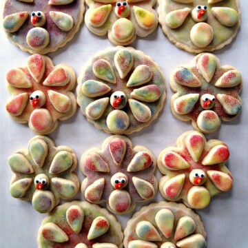 Three dimentional Painted Turkey Sugar Cookies with muticolored painted icing