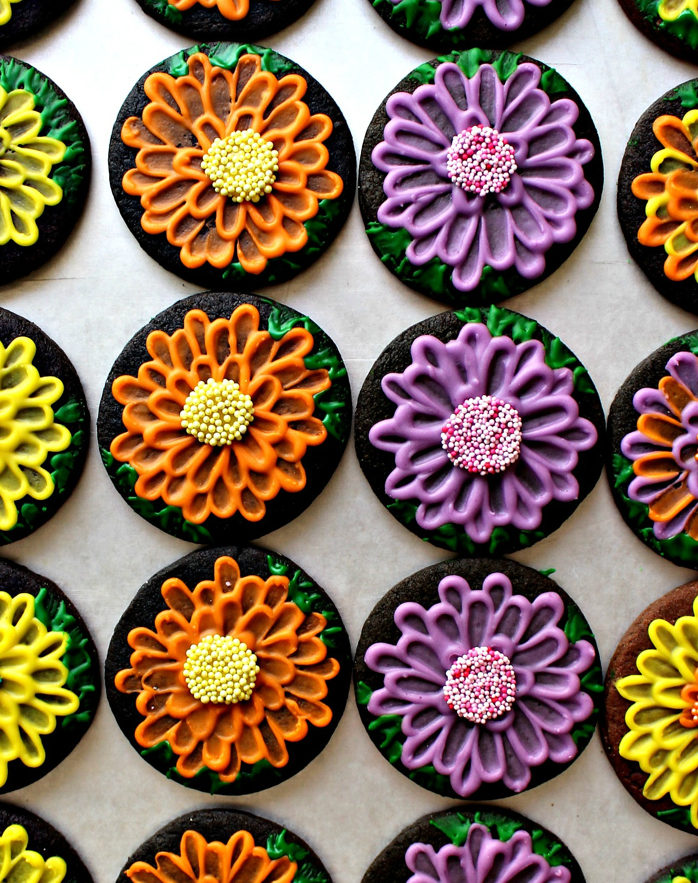 Chocolate sugar cookies decorated with orange, yellow, and purple icing to look like mums.