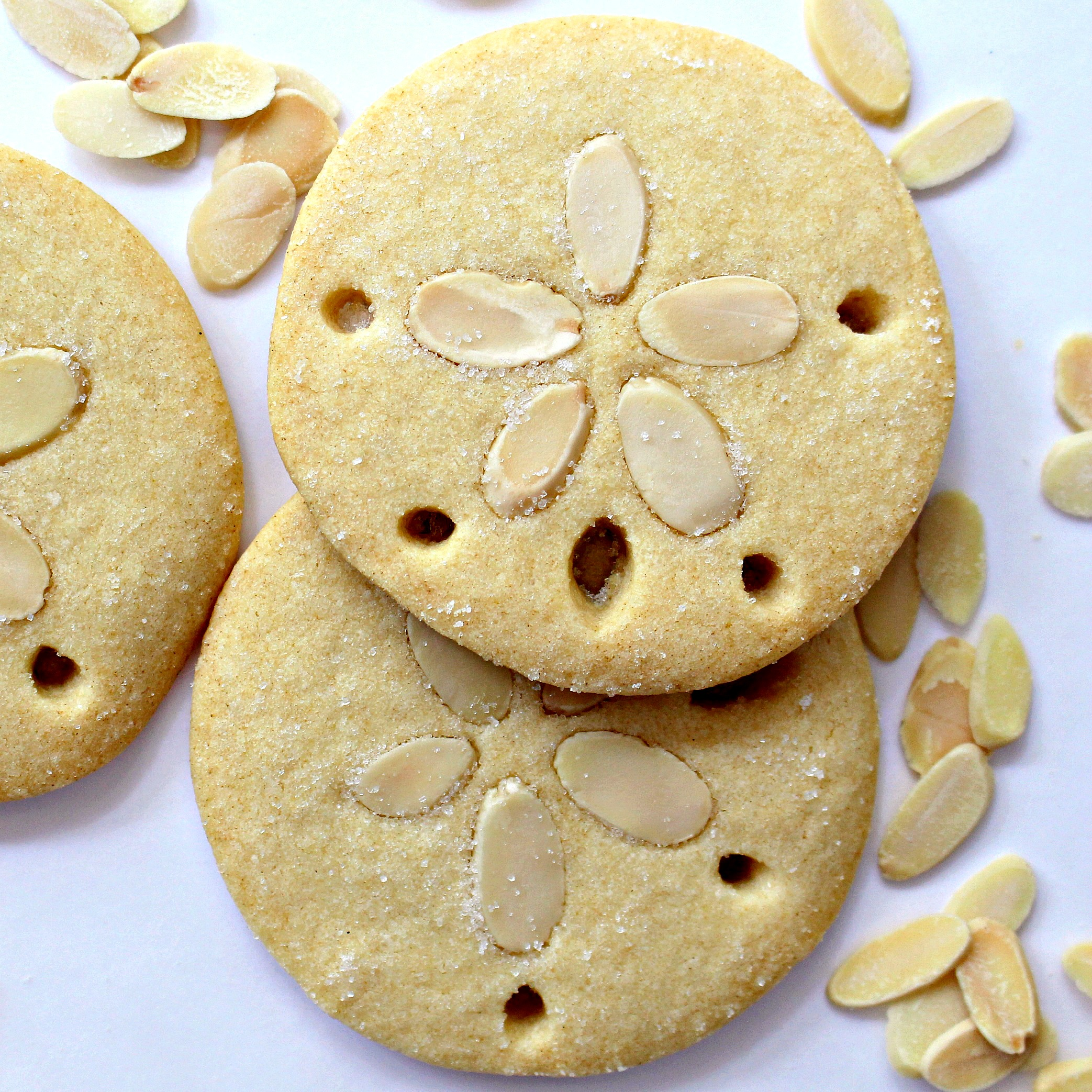 Almond Sand Dollar Cookies - The Monday Box