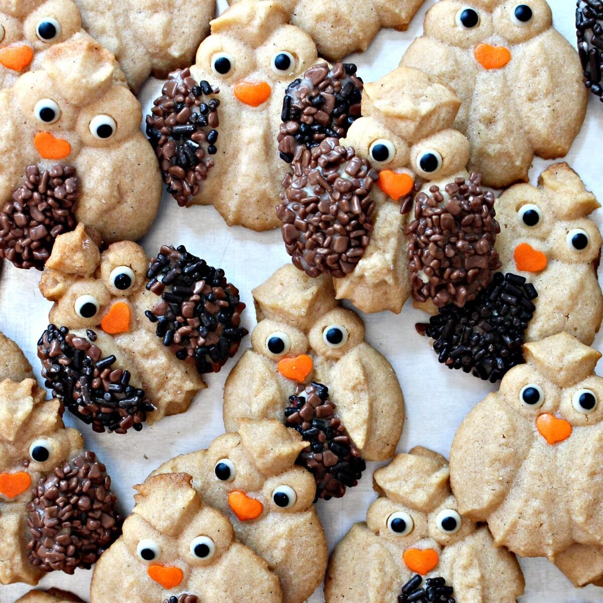 Closeup of sprinkle decorated Cinnamon Spritz Owl Cookies.