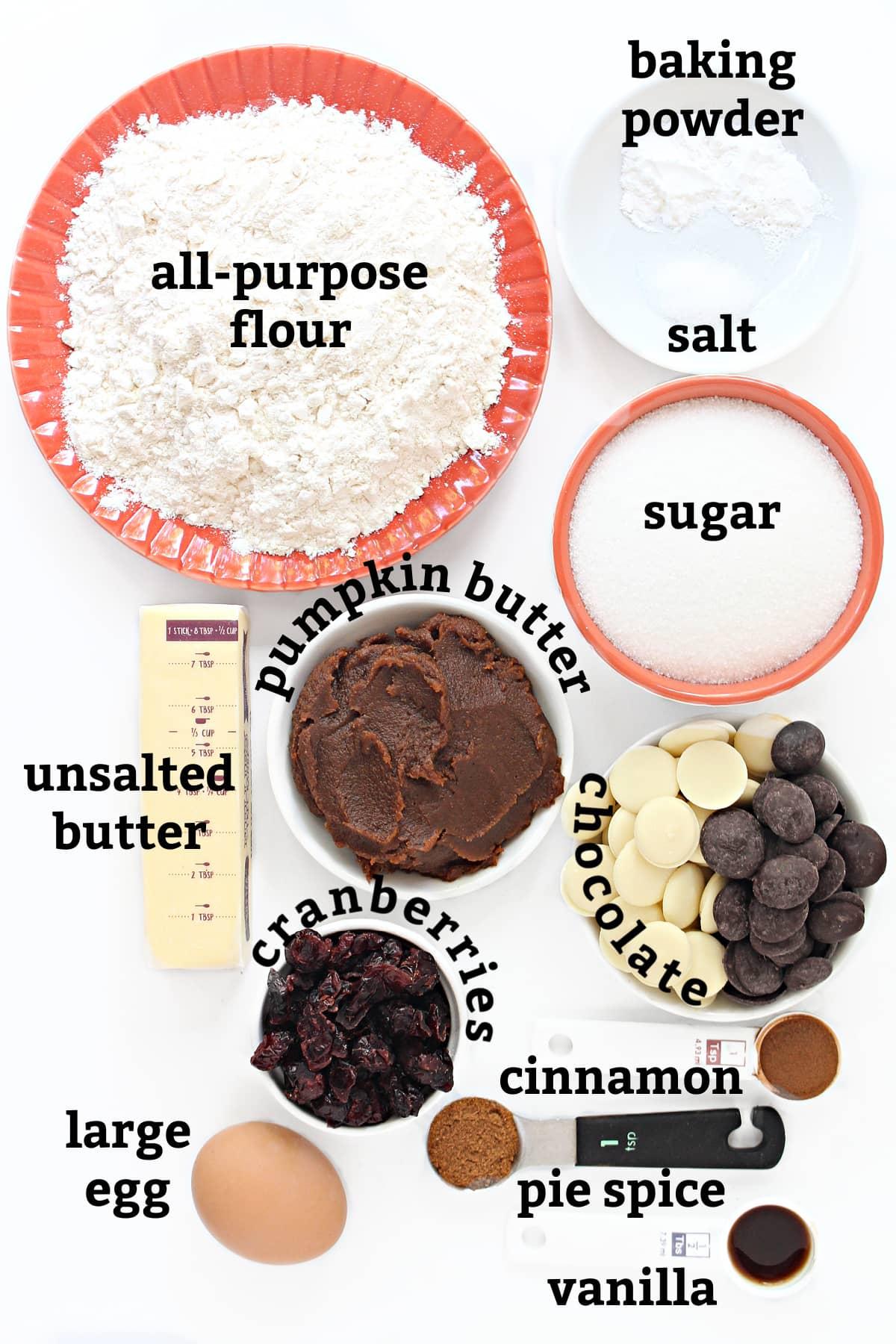 Biscotti ingredients; flour, salt, sugar, pumpkin butter, butter, cranberries, egg, cinnamon, pumpkin spice, vanilla, melting chocolate.