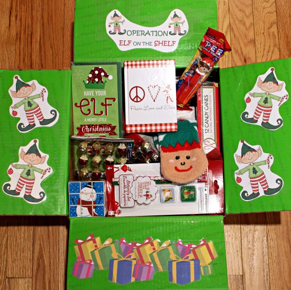 Elf on the Shelf Christmas Care Package