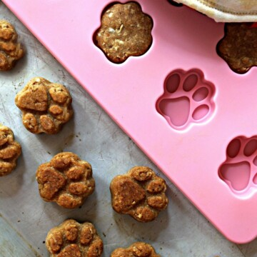 Paw Prints Dog Care Package