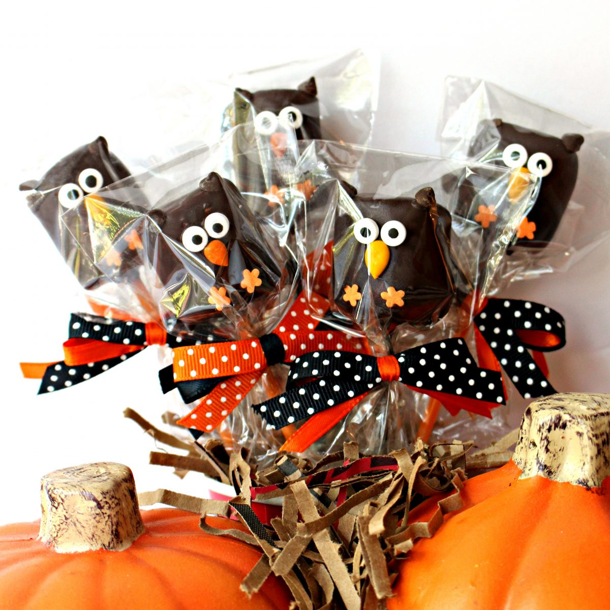 five owl marshmallow pops wrapped individually in cellophane bags , tied with polka dot ribbons in black and orange.