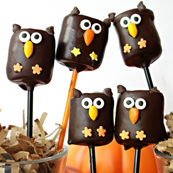Five chocolate covered marshmallows decorated like owls