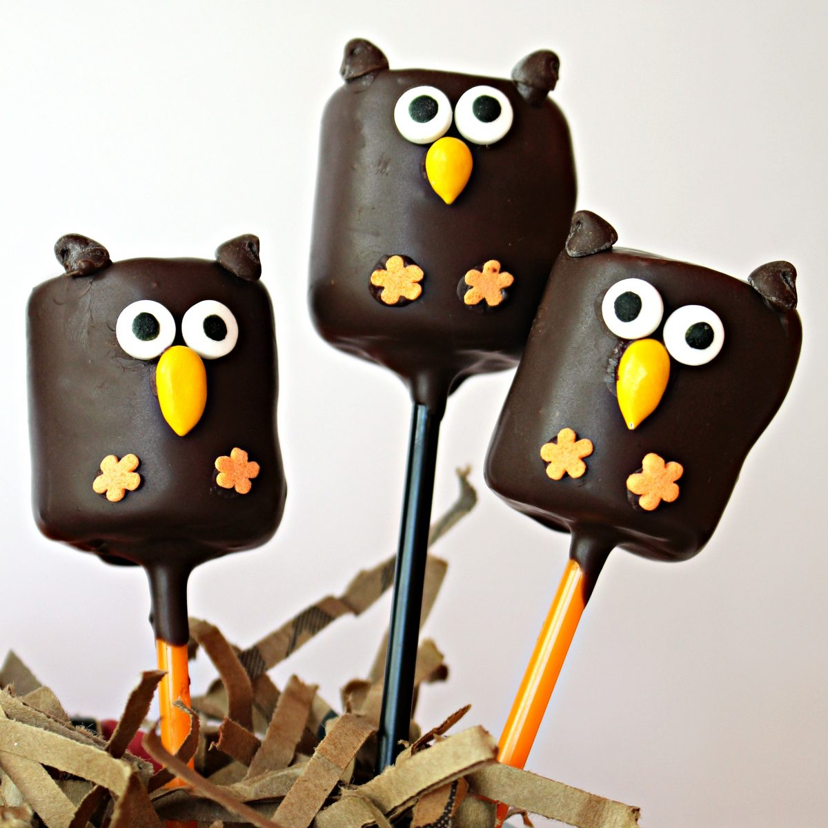Closeup of three owl marshmallow pops in a centerpiece nest.