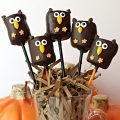 Five owl marshmallow pops on sticks in a cup filled with shredded paper like a nest