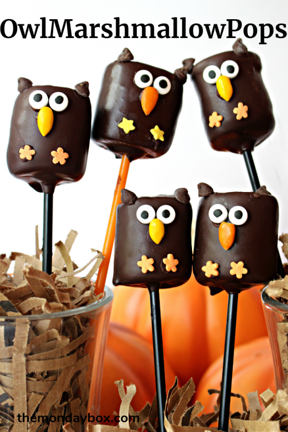 5 owl marshmallow pops on pop sticks